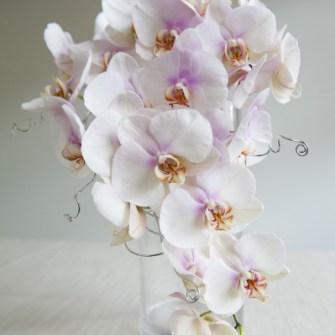 modern cascading orchid bouquet