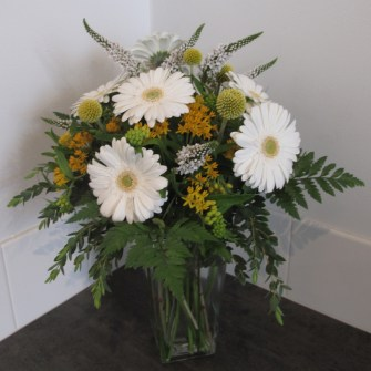 happy go lucky white gerbera daisy billy balls asclepsia floral medium arrangement