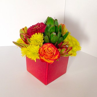 Vibrant tropical arrangement - small square