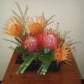 small protea arrangement