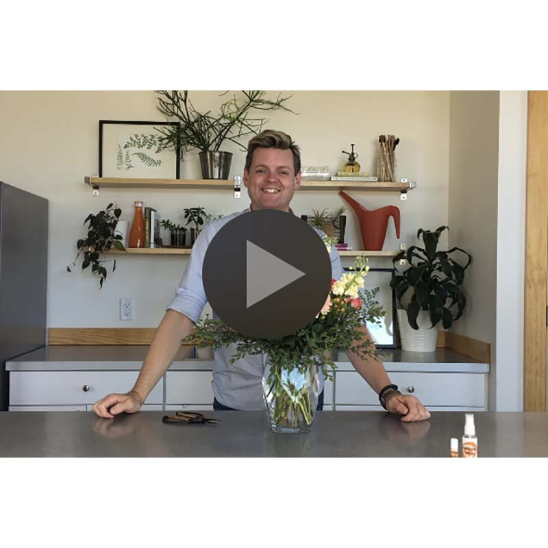 Floral-Underground-Traverse-City-Midwest-Floral-Subscription-Service-On-Demand-Workshop-Video-Icon