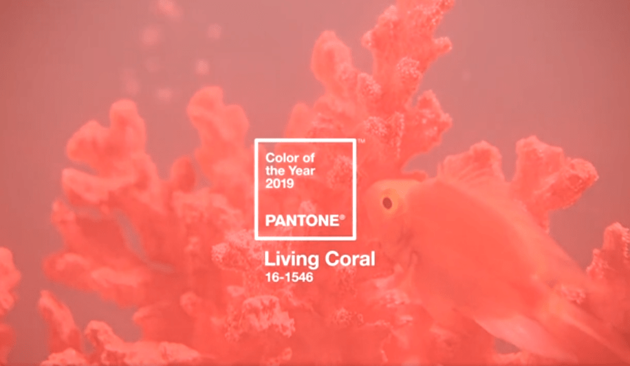 Living Coral- Pantone Color of the Year 2019