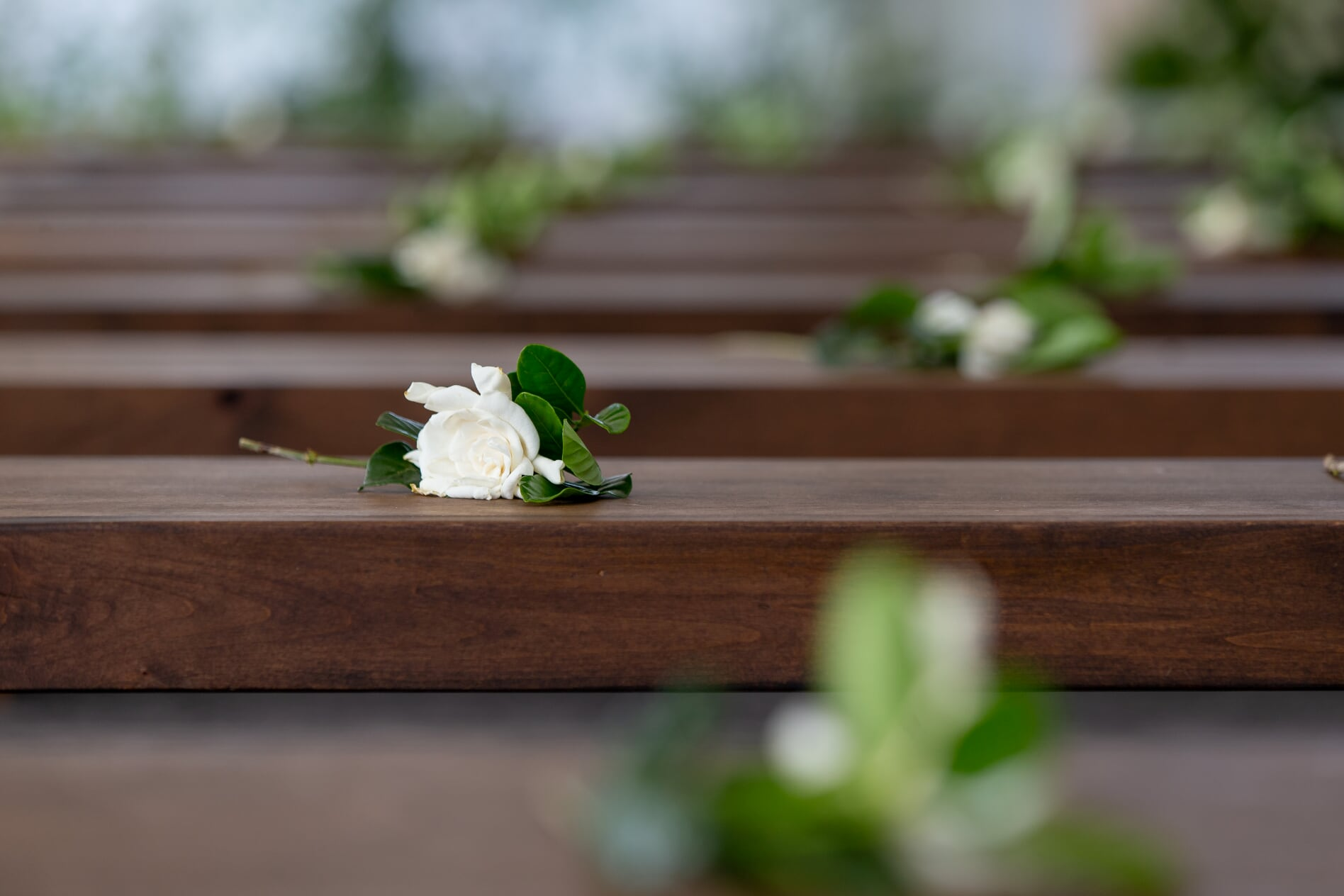 Gardenias placed on wooden benches for guests at ceremony