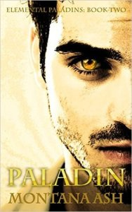 Mini Review: Paladin (Elemental Paladins #2) by Montana Ash