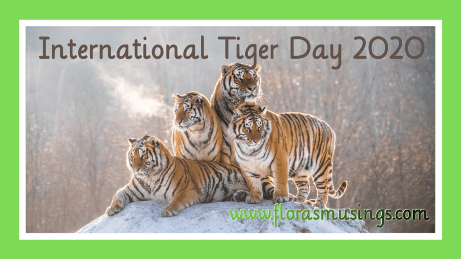 Featured Image - International Tiger Day 2020 (2)