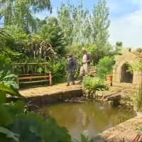 Jardin de Bretagne : le jardin de Trez Bihan