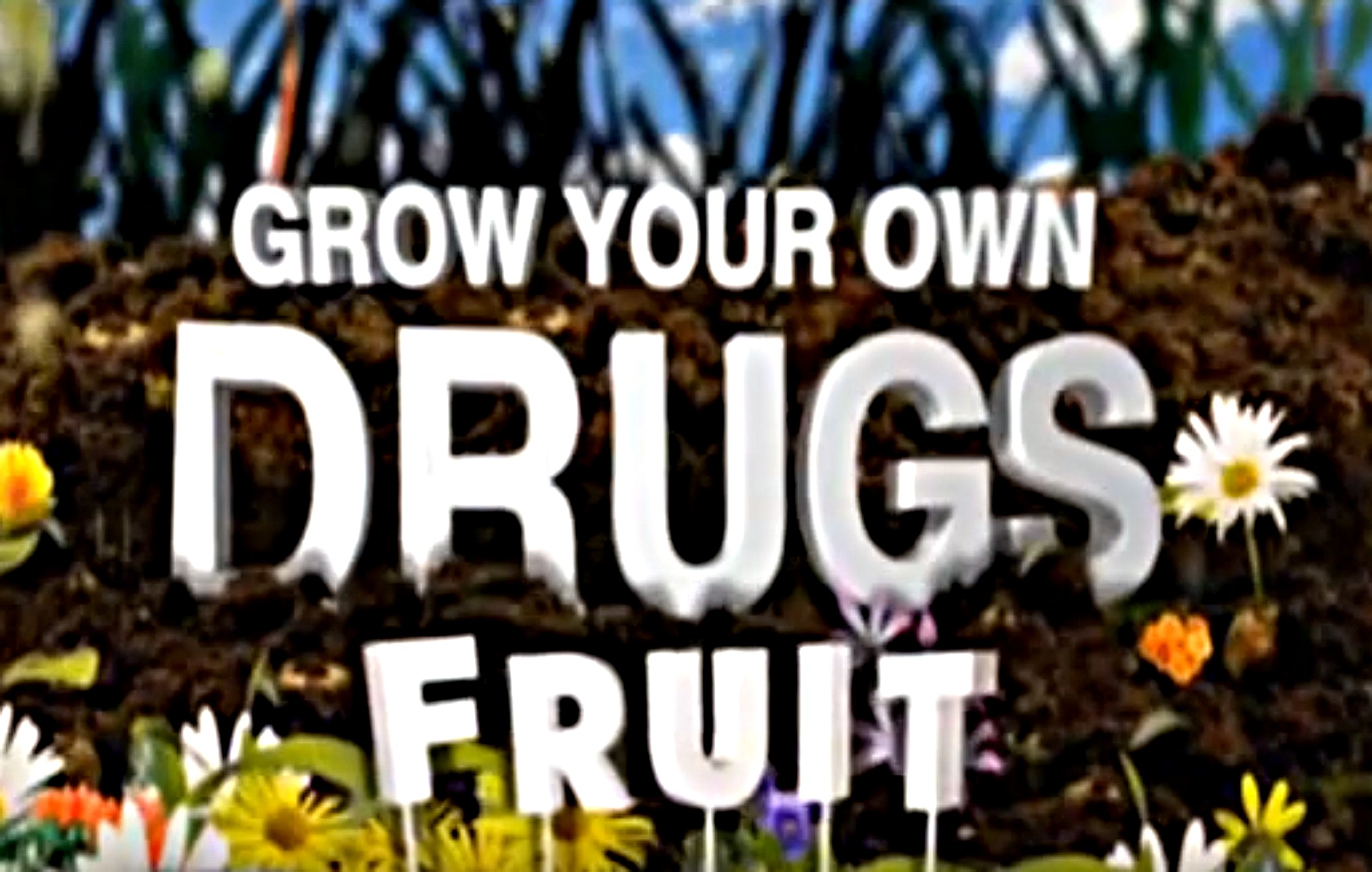 James Wong: Grow Your Own Drugs Series 1 & 2