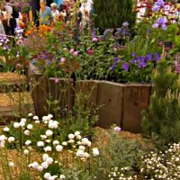 RHS Chelsea Inspiration Small Gardens