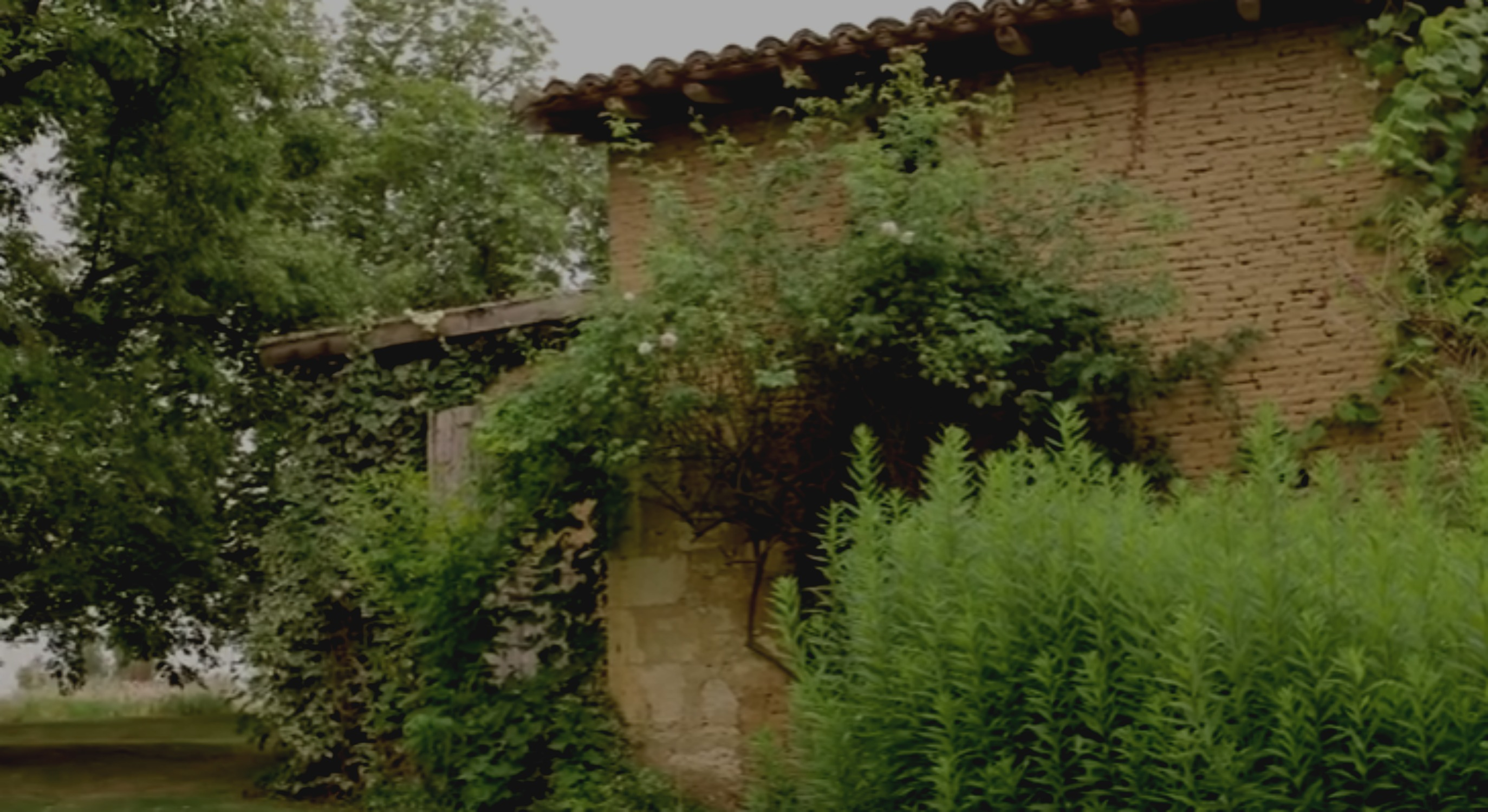 Midi-Pyrénées : le jardin de Clarisselle