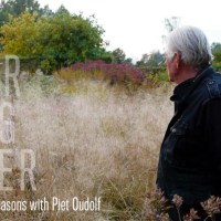 Five Seasons with Piet Oudolf