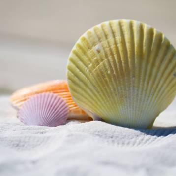 Massage und ihre positive Wirkung