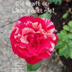 Copyright Florence Zumbihl