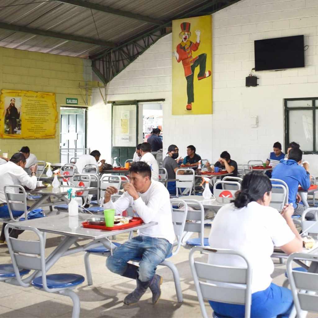 Alimentación Florequisa Ecuador