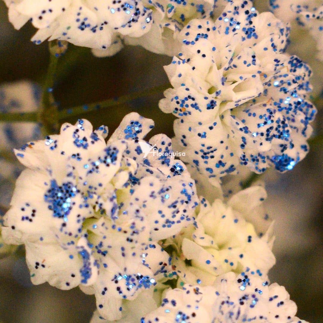 Gypsophila GLittered Blue by Florequisa Flower Growers