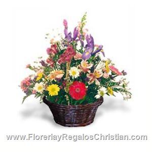P10 - Canasta con flores naturales
