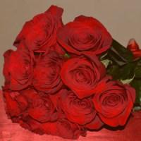 Bouquet de Rosas, 1 docena - BOU1