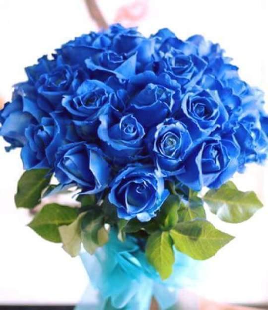 Imagenes de ramos de rosas azules para enviar por mensaje