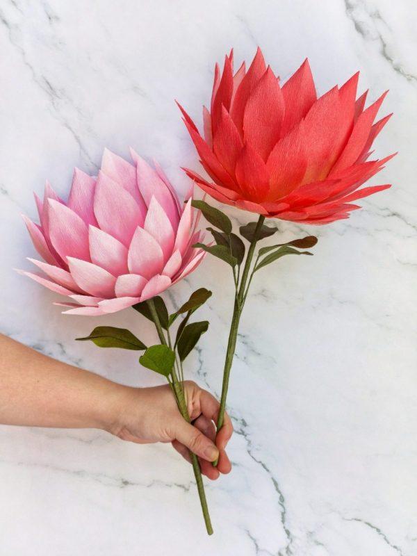 king protea de papel, flores para siempre, flores de papel crepe