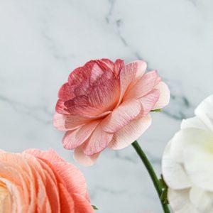 ranúnculos rosa de papel crepé, flores de papel crepé, flores para siempre, ramos de novia de papel