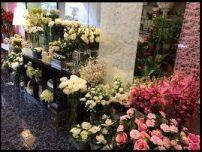 5.-tienda de flores zaira