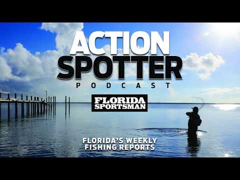Episode 98: It's Hot, but the Fishing is Hotter! | Action Spotter Podcast