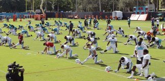 Dolphins to allow up to 13,000 fans at home opener