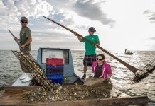 Florida shuts down bay known nationally for its oysters