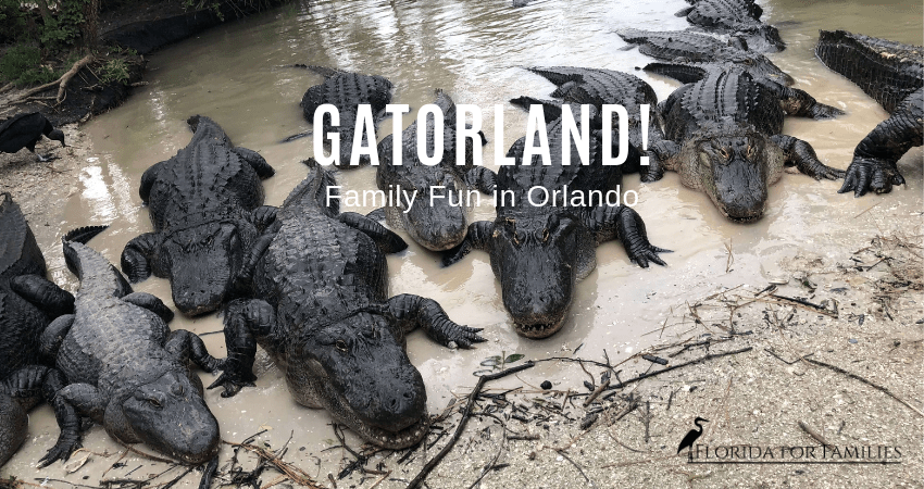 Family Fun at Gatorland, Orlando, Florida