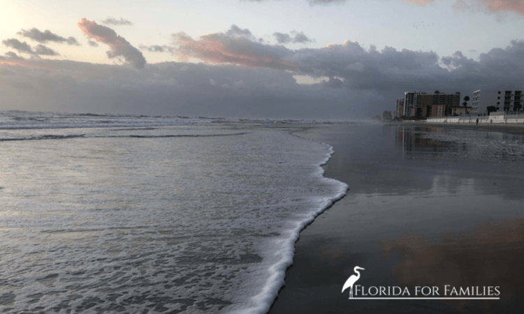 Top Things to Do with Kids in Daytona Beach