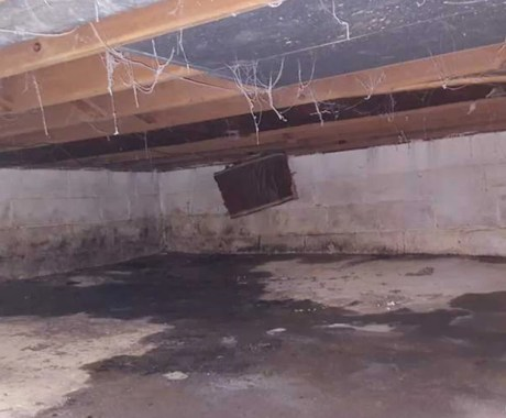 5 Unmistakable Signs of Crawl Space Damage in Winter