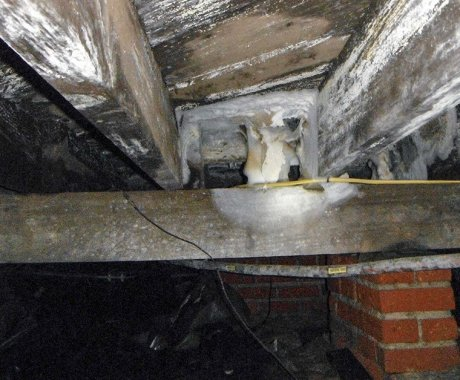 Purchasing a Home with a Damaged Crawl Space