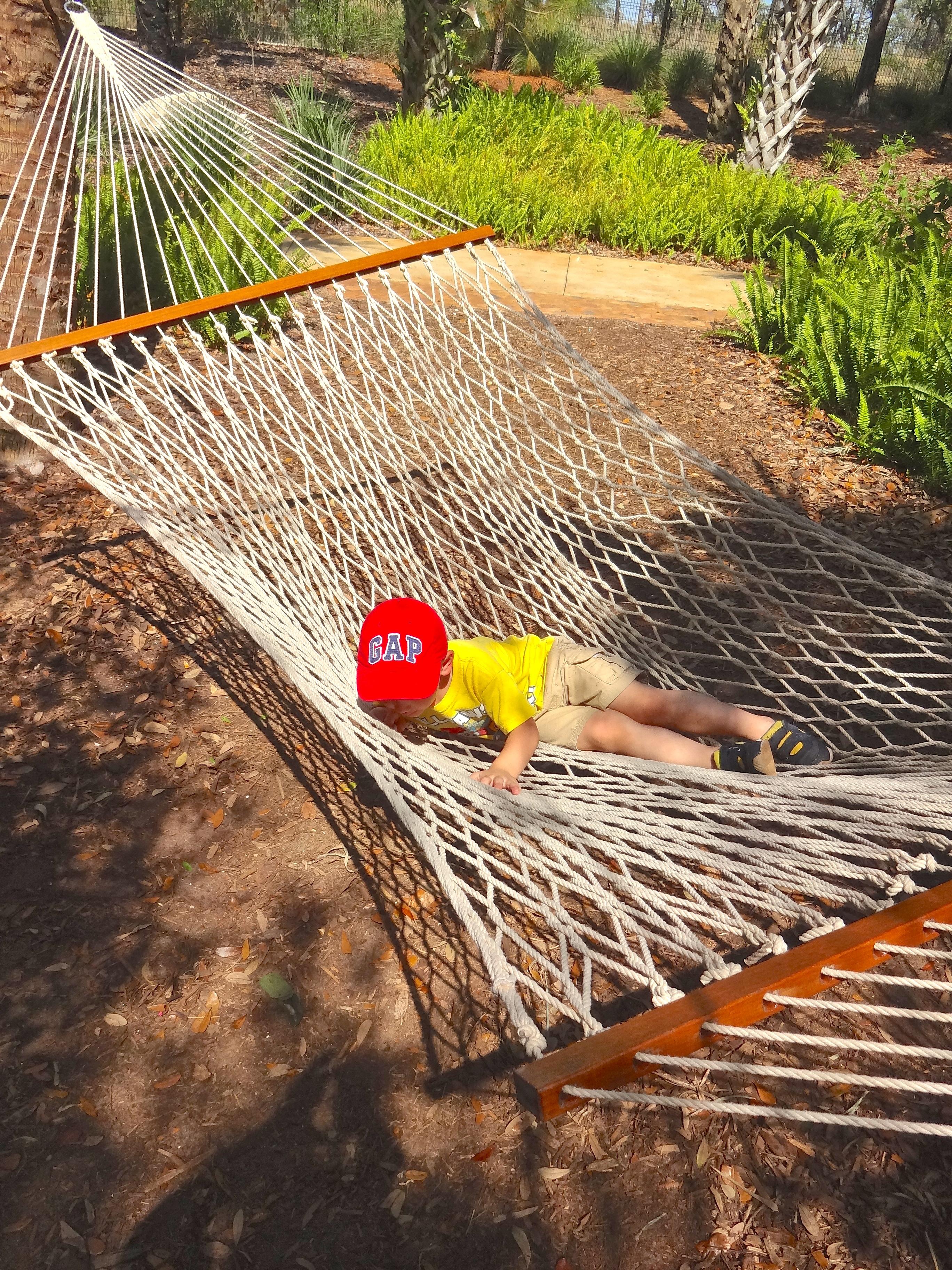 rope hammocks provide rest at hammock hollow children u0027s garden review  hammock hollow children u0027s garden at bok tower   funandfork  rh   floridafunandfork