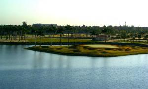 Golf Course View from Our Balcony at Marriott Doral
