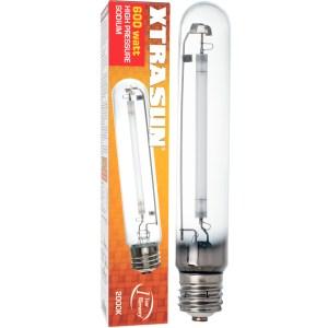 Bulb Sod 600W