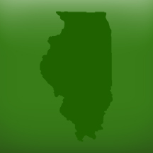 Illinois Haiti Benefit Auction Website