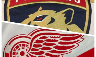 Detroit Wings Panthers Florida