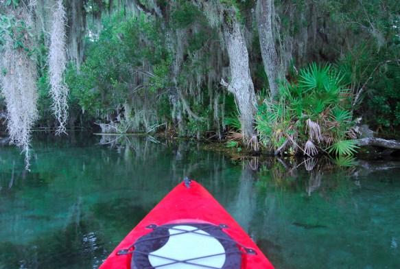 Rainbow River Kayaking