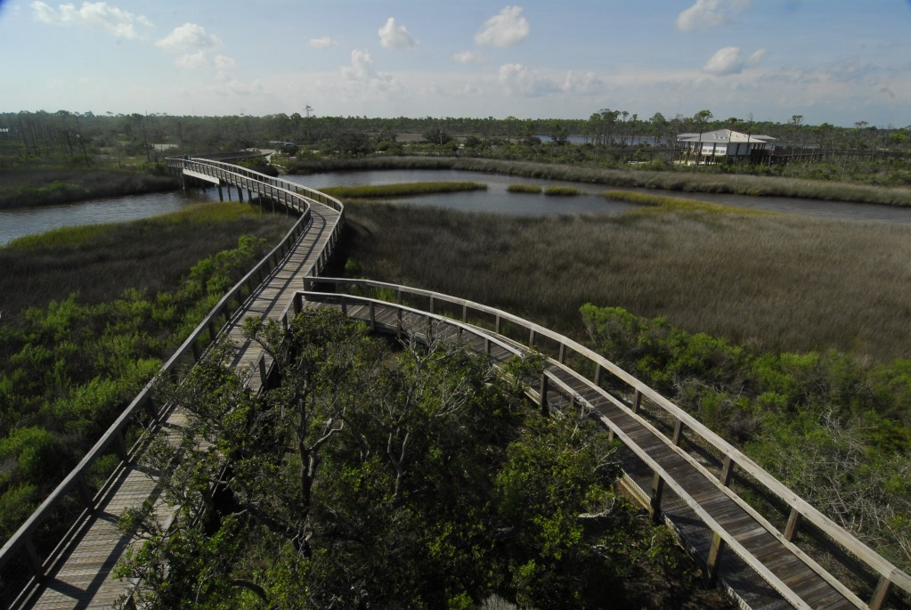 Boardwalks at Big Lagoon State Park