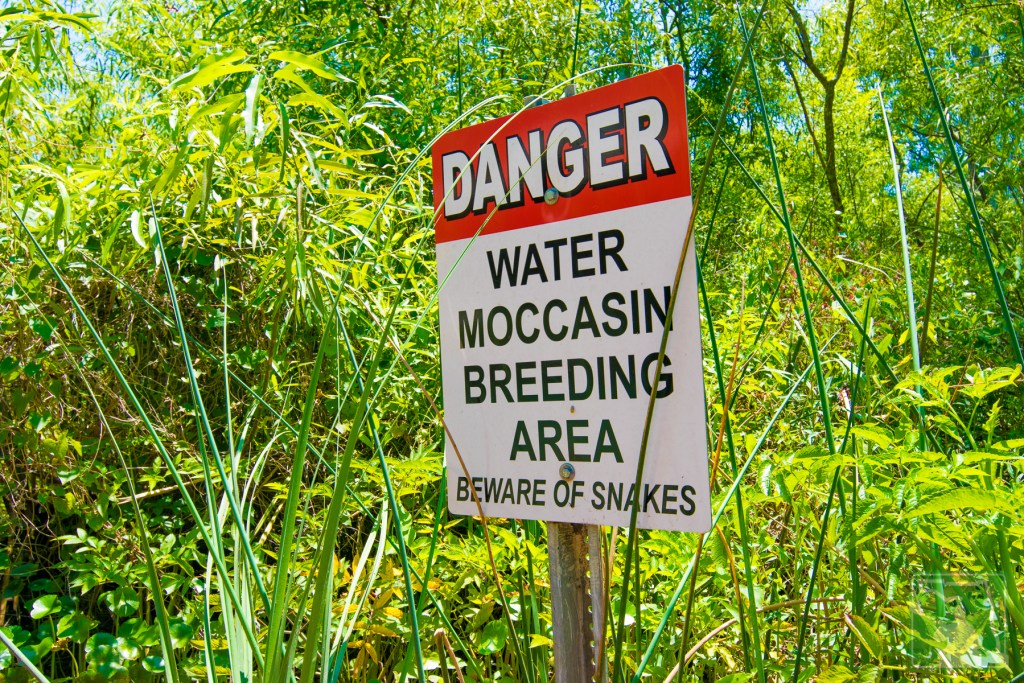 Warning - Water Moccasin Breeding Area