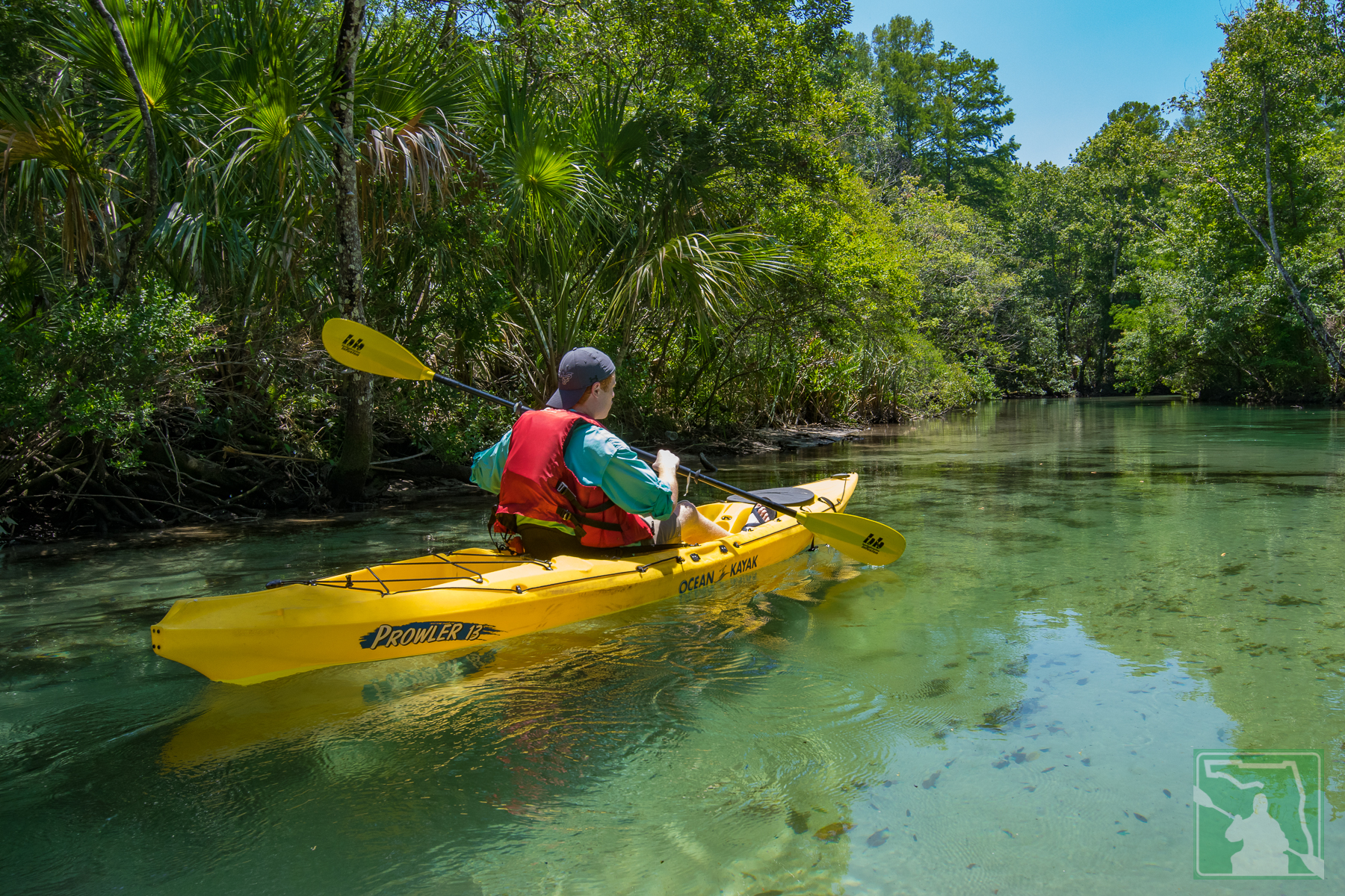 A Kayak Trip for All Skill Levels