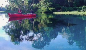 Kayak the Rainbow River