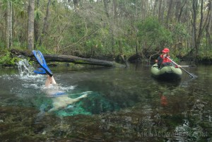 Kayaking the Chassahowitzka River