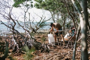 World Oceans Day Beach Cleanups 2019