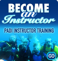Become a PADI Instructor