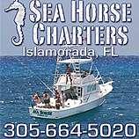 Islamorada sea horse fishing