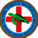 Turtle Hospital Only in the Florida Keys