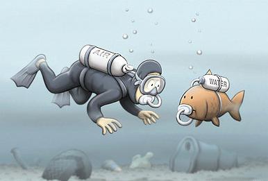 Scuba Diver and Scuba Fish