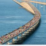 Festivals and Events 7 Mile Bridge Run Florida Keys Bucket List