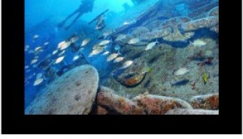Florida keys sanctuary advisory council promotes ethical fishing new artificial reefs still possible in the florida keys sciox Images