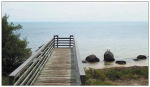 The boardwalk at Long Key State Park offers access to snorkeling areas
